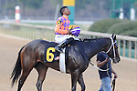 #6 Euphrosyne with jockey Ricardo Santana, Jr. aboard after the running of the Honeybee Stakes (Grade III) at Oaklawn Park in Hot Springs, Arkansas-USA on March 8, 2014. (Credit Image: © Justin Manning/Eclipse/ZUMAPRESS.com)