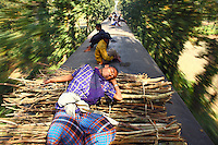 A frequent traveller, used to the enviroment, sleeps on a pile of firewood on the roof of a train. In Bangladesh many people ride on the roofs of trains as frequently that is the only space available. For others, the fares are too high and can be avoided or reduced by travelling on the roof. However, this practice also leads to regular accidents, many of them fatal..