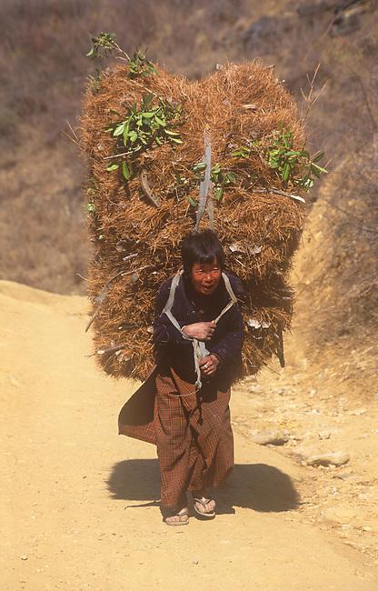 Woman Carrying Sticks, Bhutan