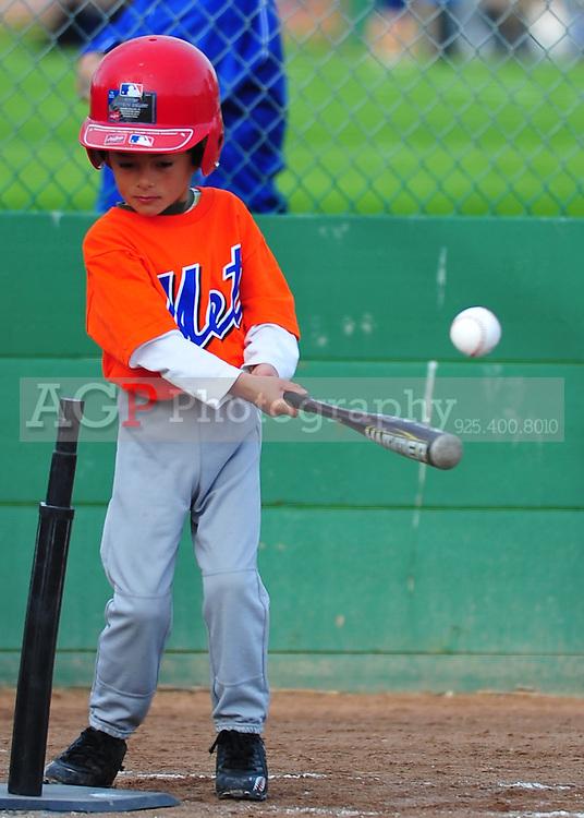 The Pleasanton National Little League Farm Mets play  at the Pleasanton Sports Park Saturday March 20, 2010. (Photo by Alan Greth)