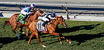 November 1, 2019 : Sharing, ridden by Manuel Franco, wins the Breeders' Cup Juvenile Fillies Turf on Breeders' Cup Championship Friday at Santa Anita Park in Arcadia, California on November 1, 2019. John Voorhees/Eclipse Sportswire/Breeders' Cup/CSM