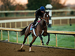 October 31, 2020: Keepmeinmind, trained by trainer Robertino Diodoro, exercises in preparation for the Breeders' Cup Juvenile at Keeneland Racetrack in Lexington, Kentucky on October 31, 2020. Alex Evers/Eclipse Sportswire/Breeders Cup