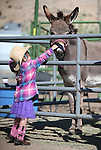 Madison Krueger, 4, checks out the animals at the annual Farm Days event at Fuji Park in Carson City, Nev., on Thursday, April 17, 2014.<br /> Photo by Cathleen Allison