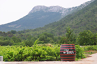 Big barrel standing in the vineyard with writing painted in white saying Vino, grape bunch and arrow, mountains in background Potmje village, Dingac wine region, Peljesac peninsula. Matusko Winery. Dingac village and region. Peljesac peninsula. Dalmatian Coast, Croatia, Europe.