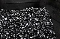 Nederland - 2019.   Berg kolen.  Berlinda van Dam / Hollandse Hoogte