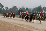 Post parade before the running of the Rebel Stakes (Grade II) at Oaklawn Park in Hot Springs, Arkansas-USA on March 15, 2014. (Credit Image: © Justin Manning/Eclipse/ZUMAPRESS.com)