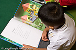 Education preschoool children ages 3-5 boy sitting and looking at picture book horizontal