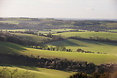 English countryside. England. Long winter shadows of trees over fields.