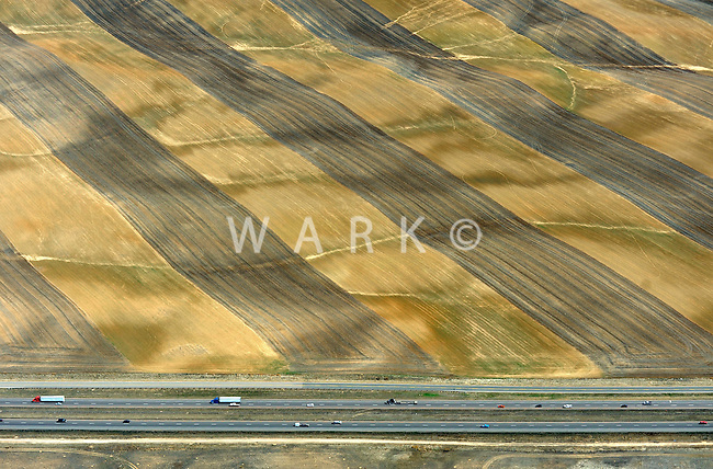 Waving field, east of Longmont, Colorado along I-25.  March 2011