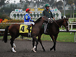 October 16, 2010.Kid Edward riden by David Flores in the post parade before the Oak Tree Derby at Hollywood Park, Inglewood, CA._Cynthia Lum/Eclipse Sportswire.com