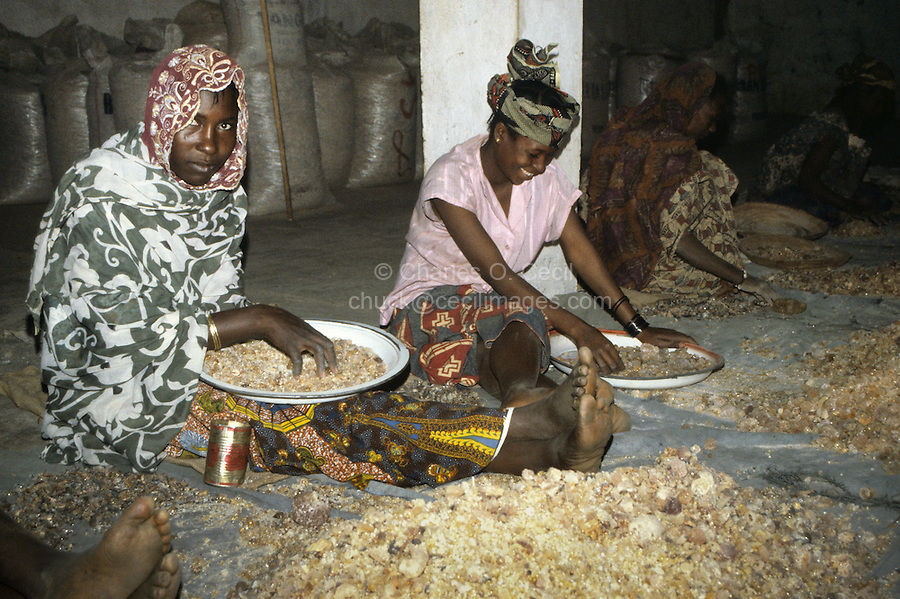Gum Arabic.  Ladies Removing Straw and Dirt by Hand.  Niamey, Niger, West Africa.