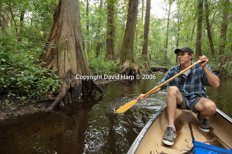 Canoeing on James Branch