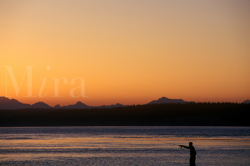 Fisherman at sunrise, casting. Point No Point, WA. North Kitsap Peninsula. West side of Puget Sound.