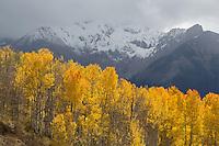 Fall colors along the Last Dollar Road, near Telluride