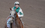 November 2, 2019 : Blue Prize, ridden by Joe Bravo, wins the Longines Breeders' Cup Distaff on Breeders' Cup Championship Saturday at Santa Anita Park in Arcadia, California on November 2, 2019. Chris Crestik/Eclipse Sportswire/Breeders' Cup/CSM