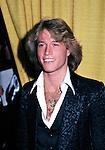 Andy Gibb 1977.© Chris Walter.