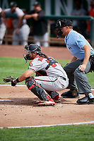 Pabel Manzanero (64) of the Billings Mustangs on defense against the Ogden Raptors with home plate umpire Trey Thompson behind the plate at Lindquist Field on August 13, 2017 in Ogden, Utah. The Raptors defeated the Mustangs 6-5.  (Stephen Smith/Four Seam Images)