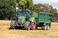 5.9.2020 Fendt tractor pulling a Bailey carting grain in Sussex<br /> ©Tim Scrivener Photographer 07850 303986<br />      ....Covering Agriculture In The