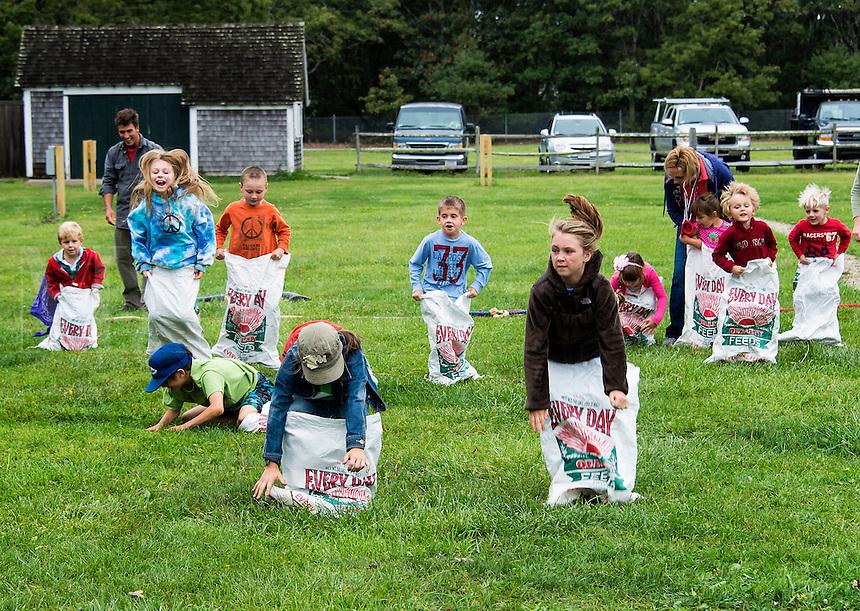 Sack race at the Martha's Vineyard Harvest fest, West Tisbury, Massachusetts, USA