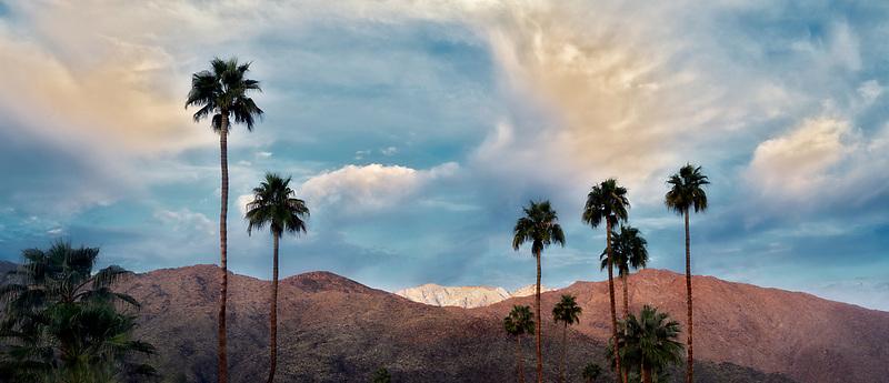 Snow, sunrise  and palm trees on San Jacinto Mountains. Palm Springs, California