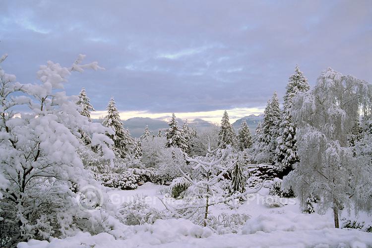 Vancouver, BC, British Columbia, Canada - Queen Elizabeth Park, Heavy Snowfall after Winter Snow Storm