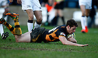 Photo: Richard Lane/Richard Lane Photography. London Wasps v Sale Sharks. LV= Cup. 02/02/2013. Wasps' Charlie Davies dives in for a try.