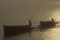 Europe/France/Poitou-Charentes/17/Charente-Maritime/Ile d'Oléron : Bateau de pêche dans le brouillard matinal