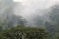 Clouds engulf the cloud rainforest at La Paz Waterfall Gardens and Peace Lodge, Costa Rica