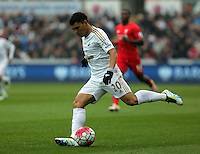 Jefferson Montero of Swansea City during the Barclays Premier League match between Swansea City and Liverpool at the Liberty Stadium, Swansea on Sunday May 1st 2016