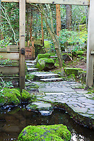 Wooden archway shows stone path and stairs through moss covered woods with reflecting pond in foreground of the Natural Garden (Shizsen-shiki-teien) in the Portland Japanese Garden