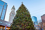 Christmas at Quincy Market, Boston, MA, USA