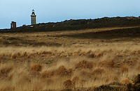 Europe/France/Bretagne/22/Côtes d'Armor/Le Cap Fréhel: La lande et le phare