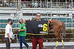 June 13, 2021: Presencial (PR) #6, ridden by jockey Jose Santiago wins the Antonio R. Barceló Classic  for trainer Jerick Llopiz at at Hipódromo Camarero in Canóvanas, Puerto Rico on June 13, 2021 (Carlos Calo/Eclipse Sportswire/CSM)