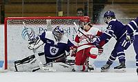 Boston, Massachusetts - January 19, 2019: NCAA Division I. Boston University (white) defeated Holy Cross (purple), 7-1, at Walter Brown Arena.
