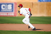 Auburn Doubledays center fielder Blake Perkins (7) running the bases during a game against the Williamsport Crosscutters on June 26, 2016 at Falcon Park in Auburn, New York.  Auburn defeated Williamsport 3-1.  (Mike Janes/Four Seam Images)