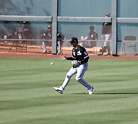 Blake Rutherford - Chicago White Sox 2021 spring training (Bill Mitchell)