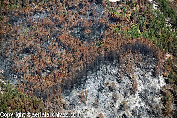 Aftermath of a wildfire near Geyserville, Sonoma County, California.