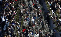 Deacons hold palm branches as they arrive for the Palm Sunday Mass celebrated by the Pope in St. Peter's Square at the Vatican, March 25, 2018.<br /> UPDATE IMAGES PRESS/Riccardo De Luca<br /> <br /> STRICTLY ONLY FOR EDITORIAL USE