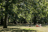 Greenwich Park, southeast London, UK: relaxing and reading in the sun