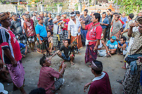 Bali, Indonesia.  Cock Fighting in an Indonesian Village.  Taking Bets before the next match.