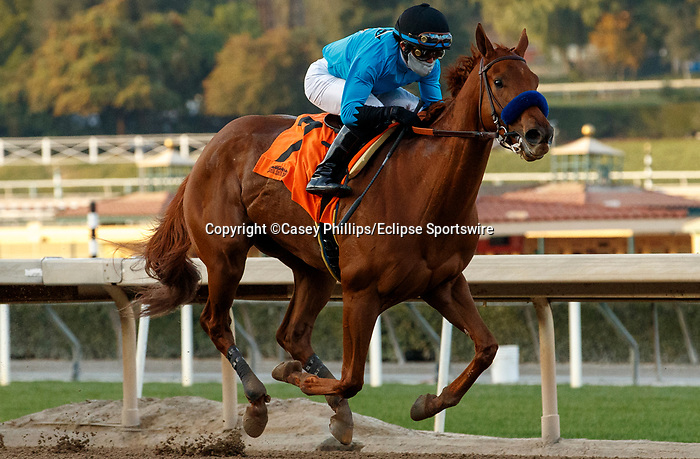 ARCADIA, CA JANUARY 3: #7 Kalypso, ridden by Joel Rosario, makes it look easy scoring over stablemate #6 Frosteria, ridden by Mike Smith, to win the Santa Ynez Stakes (Grade ll) on January 3, 2021 at Santa Anita Park in Arcadia, CA.(Photo by Casey Phillips/EclipseSportswire/CSM)
