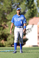 Patrick White - Kansas City Royals - 2010 Instructional League. Former NFL quarterback White works out at the Royals complex in Surprise, AZ on 09/25/2010 after leaving the Miami Dolphins to focus on a possible baseball career..Photo by:  Bill Mitchell/Four Seam Images..