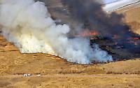 Wildfire at Lake Minnequa Park, Pueblo, Colorado. Dec 2012. JC80980
