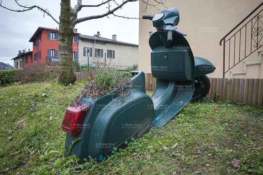 Switzerland. Canton Ticino. Pregassona. A derelict Vespa  is parked in the lawn of a private house's garden. The scooter is used as decoration with flower pots inside the seat. Vespa is an Italian brand of scooter manufactured by Piaggio. The name means wasp in Italian. The Vespa has evolved from a single model motor scooter manufactured in 1946 by Piaggio & Co. S.p.A. of Pontedera, Italy to a full line of scooters and one of seven companies today owned by Piaggio. Pregassona s a quarter of the city of Lugano. 1.02.2020  © 2020 Didier Ruef