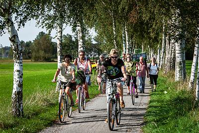 Deutschland, Bayern, Chiemgau, bei Bernau: Radfahrer, Brikenallee | Germany, Bavaria, Chiemgau, near Bernau: birch alley, cyclists