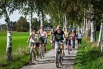 Deutschland, Bayern, Chiemgau, bei Bernau: Radfahrer, Brikenallee | Germany, Bavaria, Chiemgau, near Bernau: birch alley, cyclists