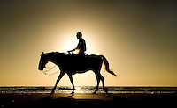 A man silhouetted rides a horse along the beach in Amelia Island, FL