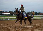 October 30, 2020: Ollie'S Candy, trained by trainer John W. Sadler, exercises in preparation for the Breeders' Cup Distaff at at Keeneland Racetrack in Lexington, Kentucky on October 30, 2020. Alex Evers/Eclipse Sportswire/Breeders Cup