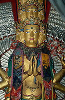 Leh: im Kloster Sanka, Ladakh (Jammu+Kashmir)r, Indien