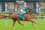 20 June 2009: Drivingmaxandmitzi, ridden by R. Homeister, wins the 7th race at Colonial Downs. Drivingmaxandmitzi is owned by Midwest Thoroughbreds and trained by H. Magana.